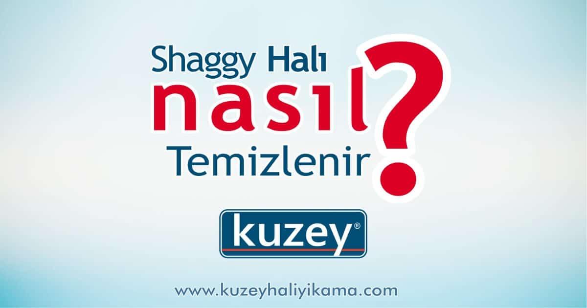 Shaggy Halı Nasıl Temizlenir?